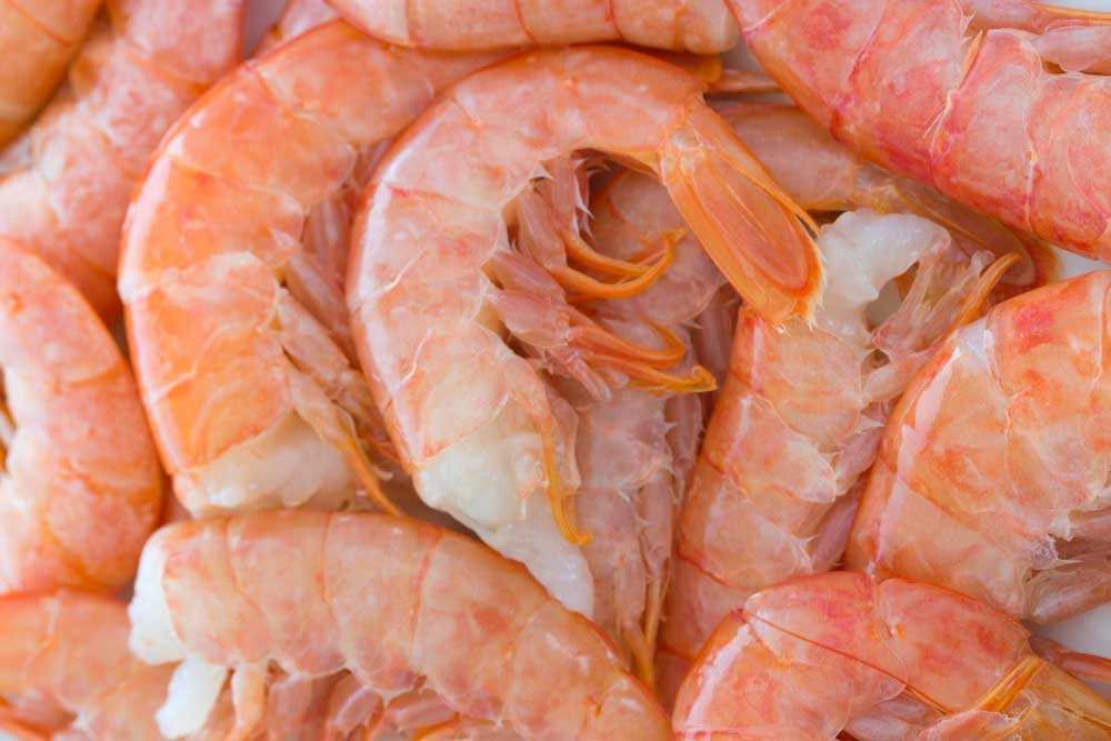 Making the Most out of your Seafood: Shrimp